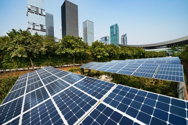 Sustentabilidade Empresarial - Analise